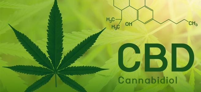 CBD Öl Logo